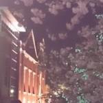 桜の通り抜け2016年(平成28年)開催時期や時間は?駅からのアクセスは?