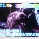 福岡の仮面ライダーはどこに出没?場所や時間を調べてみた!