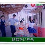 大里菜桜(9歳盆栽少女)の幼稚園や小学校は?家族や兄弟に動画もチェック!