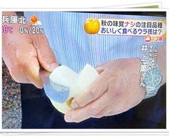 梨の美味しい切り方