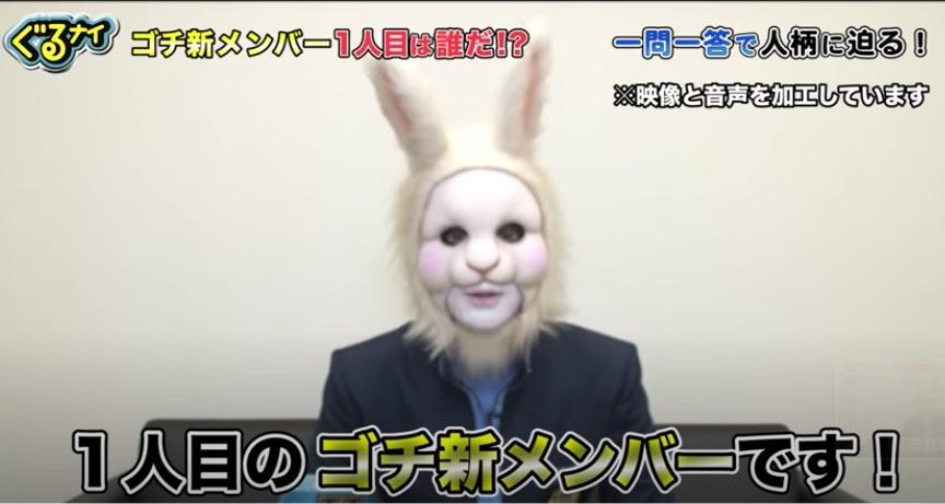 ゴチ新メンバー(ウサギ)