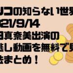 マツコの知らない世界2021/9/14豊田真奈美出演の見逃し動画を無料で見る方法まとめ!